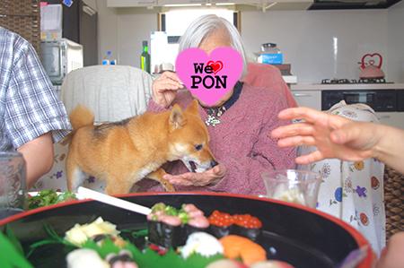 http://file.udon.sakeblog.net/2.jpg