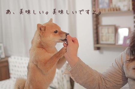 http://blog.cnobi.jp/v1/blog/user/5372066eaa7f42ee290a4176dda1b356/1429876995
