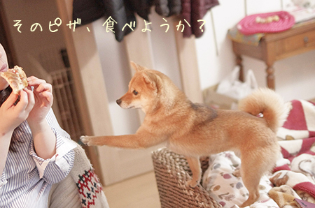 http://blog.cnobi.jp/v1/blog/user/5372066eaa7f42ee290a4176dda1b356/1429877003