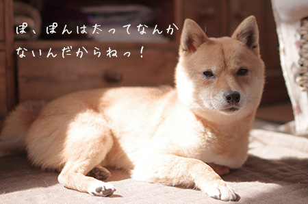 http://blog.cnobi.jp/v1/blog/user/5372066eaa7f42ee290a4176dda1b356/1429877025