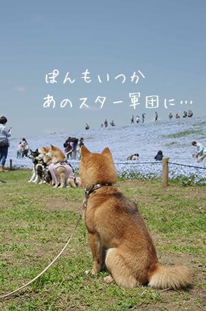 http://blog.cnobi.jp/v1/blog/user/5372066eaa7f42ee290a4176dda1b356/1430264621