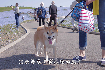 http://blog.cnobi.jp/v1/blog/user/5372066eaa7f42ee290a4176dda1b356/1430264639