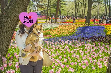 http://blog.cnobi.jp/v1/blog/user/5372066eaa7f42ee290a4176dda1b356/1430570174