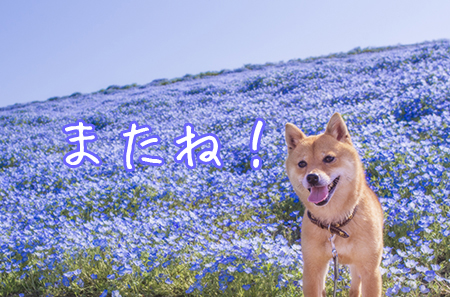 http://blog.cnobi.jp/v1/blog/user/5372066eaa7f42ee290a4176dda1b356/1430571146