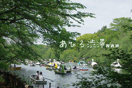 http://blog.cnobi.jp/v1/blog/user/5372066eaa7f42ee290a4176dda1b356/1430745870