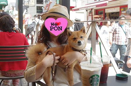 http://file.udon.sakeblog.net/IMGP9865.jpg