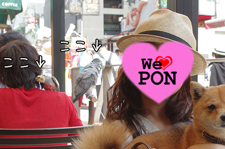http://blog.cnobi.jp/v1/blog/user/5372066eaa7f42ee290a4176dda1b356/1430745945
