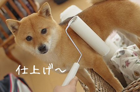 http://blog.cnobi.jp/v1/blog/user/5372066eaa7f42ee290a4176dda1b356/1431082231
