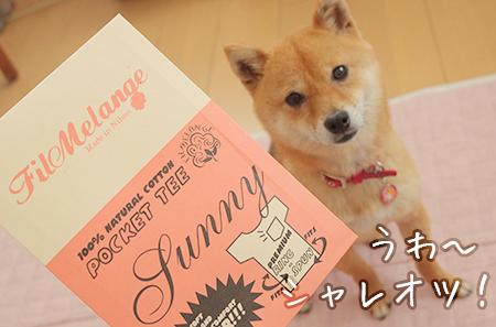 http://file.udon.sakeblog.net/IMGP9827.jpg