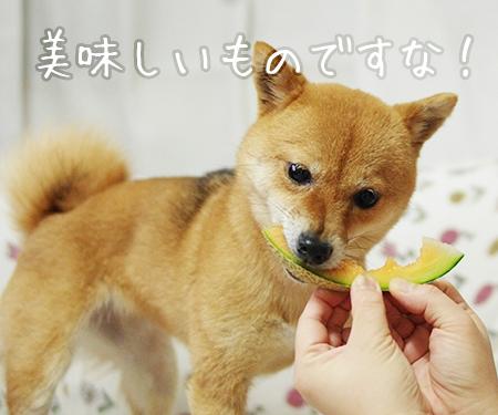 http://blog.cnobi.jp/v1/blog/user/5372066eaa7f42ee290a4176dda1b356/1432430362