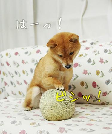 http://blog.cnobi.jp/v1/blog/user/5372066eaa7f42ee290a4176dda1b356/1432432041