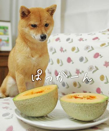 http://blog.cnobi.jp/v1/blog/user/5372066eaa7f42ee290a4176dda1b356/1432432047