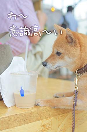 http://blog.cnobi.jp/v1/blog/user/5372066eaa7f42ee290a4176dda1b356/1432725165