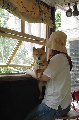 http://file.udon.sakeblog.net/IMGP9970.jpg