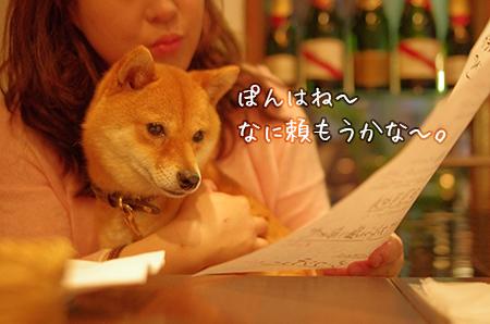 http://blog.cnobi.jp/v1/blog/user/5372066eaa7f42ee290a4176dda1b356/1433290804
