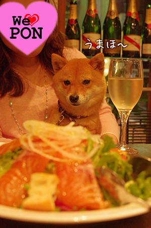 http://blog.cnobi.jp/v1/blog/user/5372066eaa7f42ee290a4176dda1b356/1433290827