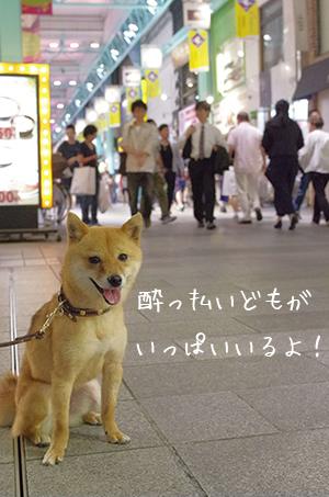 http://blog.cnobi.jp/v1/blog/user/5372066eaa7f42ee290a4176dda1b356/1433290862