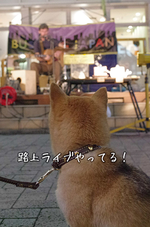 http://blog.cnobi.jp/v1/blog/user/5372066eaa7f42ee290a4176dda1b356/1433290879
