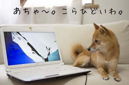 http://blog.cnobi.jp/v1/blog/user/5372066eaa7f42ee290a4176dda1b356/1436090719