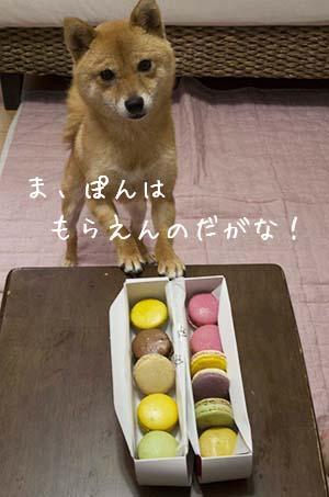 http://blog.cnobi.jp/v1/blog/user/5372066eaa7f42ee290a4176dda1b356/1436347043