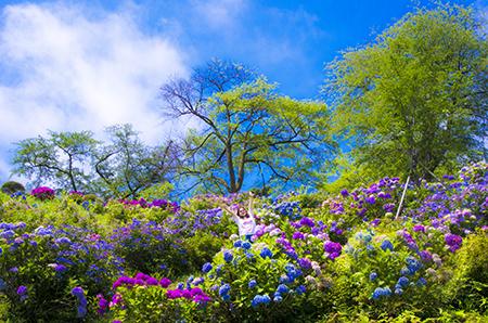 http://file.udon.sakeblog.net/IMGP0061.jpg