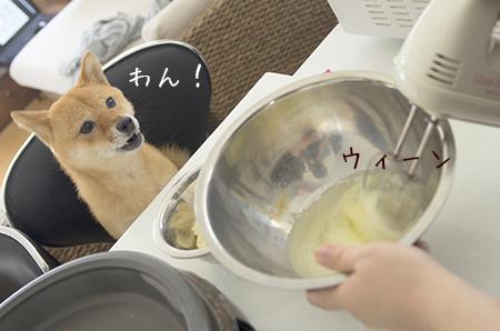 http://file.udon.sakeblog.net/3722cbb5.jpeg
