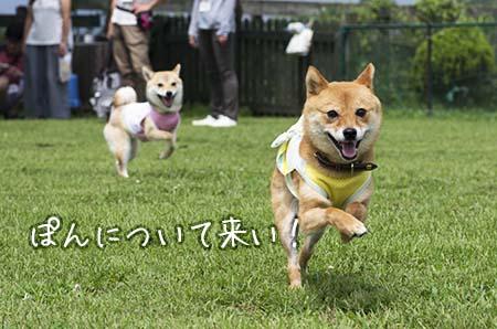 http://blog.cnobi.jp/v1/blog/user/5372066eaa7f42ee290a4176dda1b356/1437869532