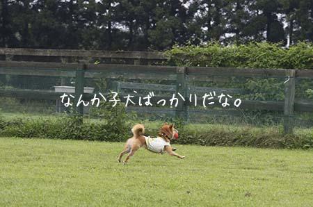 http://blog.cnobi.jp/v1/blog/user/5372066eaa7f42ee290a4176dda1b356/1437869574