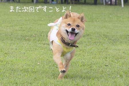 http://blog.cnobi.jp/v1/blog/user/5372066eaa7f42ee290a4176dda1b356/1437871101