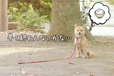 http://blog.cnobi.jp/v1/blog/user/5372066eaa7f42ee290a4176dda1b356/1438148627