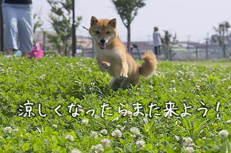 http://blog.cnobi.jp/v1/blog/user/5372066eaa7f42ee290a4176dda1b356/1438515017