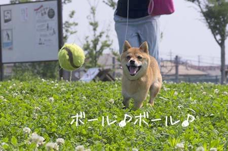 http://blog.cnobi.jp/v1/blog/user/5372066eaa7f42ee290a4176dda1b356/1438515031