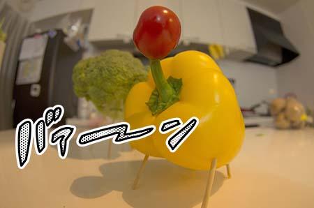 http://file.udon.sakeblog.net/788dc826.jpeg