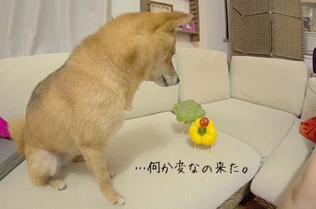 http://blog.cnobi.jp/v1/blog/user/5372066eaa7f42ee290a4176dda1b356/1439121774