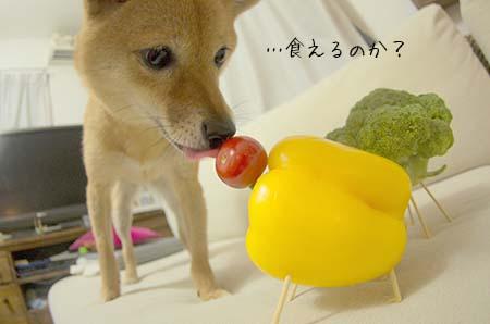http://blog.cnobi.jp/v1/blog/user/5372066eaa7f42ee290a4176dda1b356/1439121776