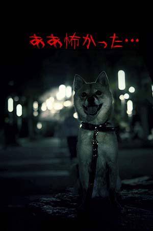 http://blog.cnobi.jp/v1/blog/user/5372066eaa7f42ee290a4176dda1b356/1439723702