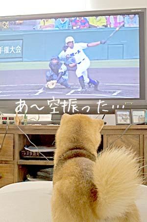 http://file.udon.sakeblog.net/76267510.jpeg