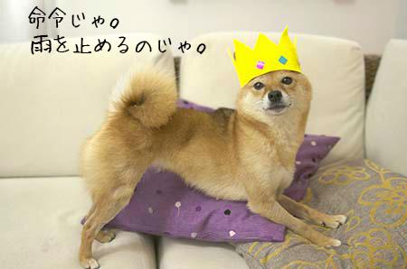 http://blog.cnobi.jp/v1/blog/user/5372066eaa7f42ee290a4176dda1b356/1440933240