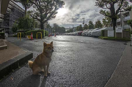http://file.udon.sakeblog.net/IMGP0853.jpg
