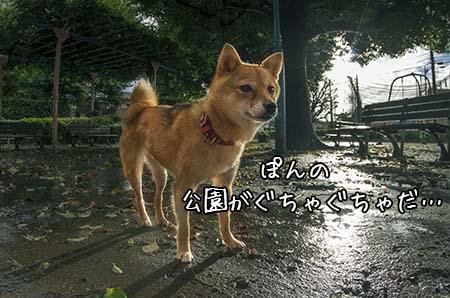 http://file.udon.sakeblog.net/IMGP0858.jpg