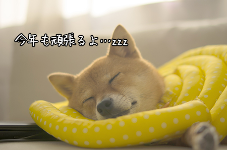 http://blog.cnobi.jp/v1/blog/user/5372066eaa7f42ee290a4176dda1b356/1442395604