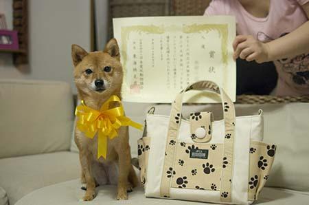 http://blog.cnobi.jp/v1/blog/user/5372066eaa7f42ee290a4176dda1b356/1442740099