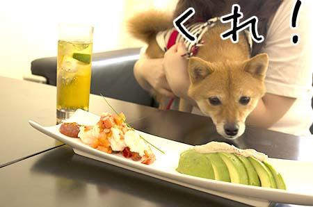 http://file.udon.sakeblog.net/IMGP0952.jpg