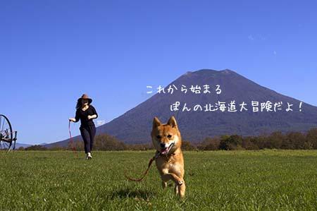 http://file.udon.sakeblog.net/IMGP1105.jpg
