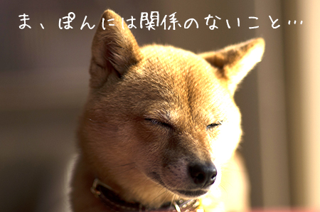 http://blog.cnobi.jp/v1/blog/user/5372066eaa7f42ee290a4176dda1b356/1445420675
