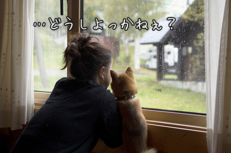 http://file.udon.sakeblog.net/IMGP1257.jpg