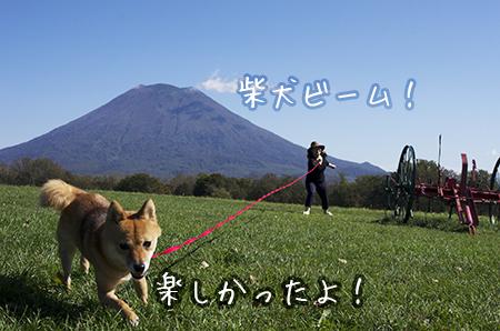 http://file.udon.sakeblog.net/IMGP1051.jpg
