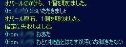20101010-011.jpg