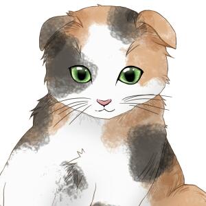 メディバンペイントで猫を描く