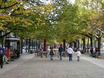 800px-Unter_den_Linden_im_Herbst.jpg